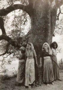 26 marzo 1973: India: nasce il Movimento Chipko per la salvaguardia e conservazione della foresta